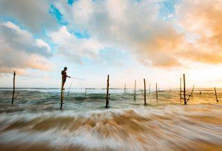 Experience the Splendour of Sri Lanka